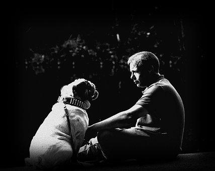 Friendship, Pet, Bulldog, Trust, Master, Family, Snout