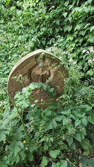 Gravestone, Graveyard, Overgrown, Headstone, Churchyard