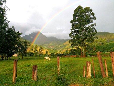 Rainbow, Horse, Mountain, The Serra Do Brigadeiro