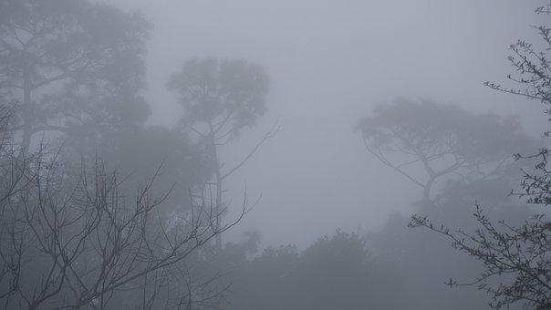 Fog, Grey, Dreary, Mist, Gray, Air, Backdrop, Vapor