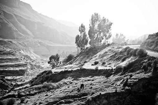 Peru, The Colca Valley, Inca, Ande