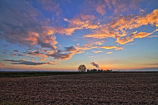 Paddies, Po Valley, Vercelli, Vercellese, Campaign, Hdr