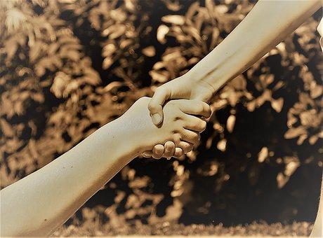Hands, Friendship, Help, Together, Love, Shaking Hands
