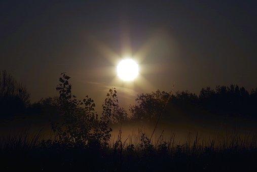 Sunrise, The Rays, The Sun, Dark, Sky, Scrubs, Nature