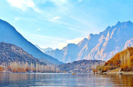 Tree, Lake, Pakistan, Nature, Landscape, Forest, Travel