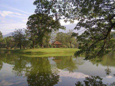 Lake, Garden, Taiping, Nature, Park, Landscape, Green