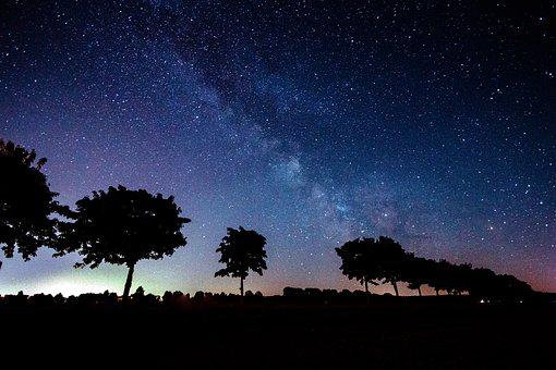 Star, Milky Way, Trees, Shadow, Silhouette, Night Sky
