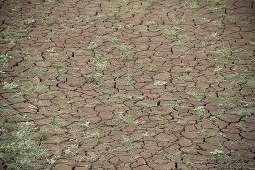 Dry, Global Warming, Dehydrated, Drought, Summer