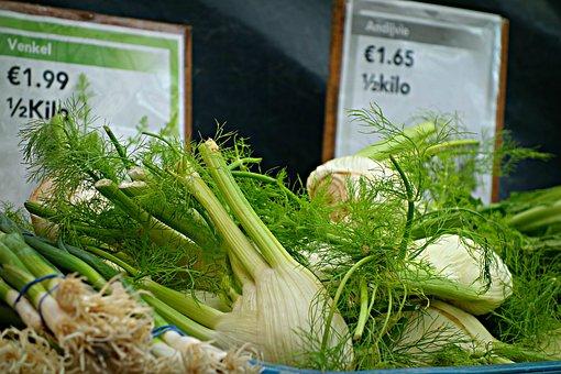 Fennel, Herb, Foeniculum Vulgare, Fennel Bulb, Food