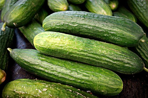 Cucumber, Vegetable, Fresh Cucumber, Cucumis Sativus