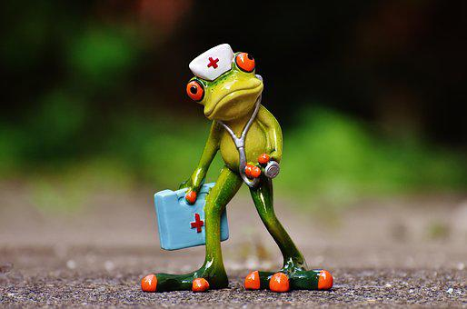 Frog, Fig, Nurse, Doctor On Call, Funny, Decoration