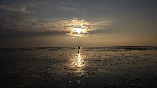 Wadlopen, Holland, Wadden Sea, Walker, Wadloper
