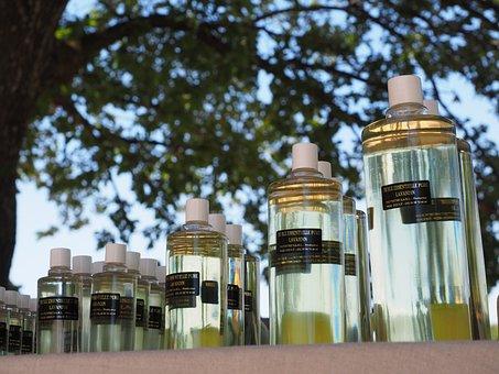 Lavender Oil, Fragrance, Smell, Lavender, Lavender Sale
