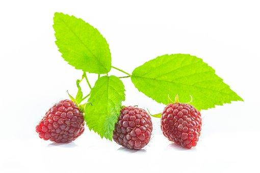 Malina, White Background, An Isolated, Raspberries