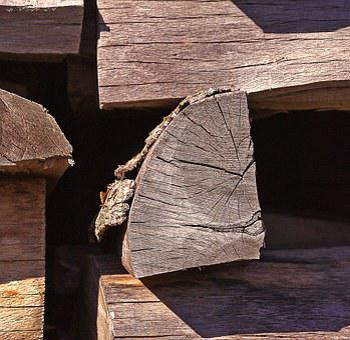 Wood, Fuel, Wood Logs, Sawn Timber, Stocks, Winter