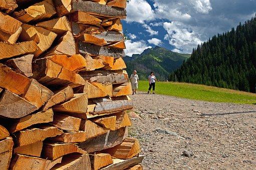 Wood, Sawn Timber, Wood Logs, Beech Logs, Fuel, Work