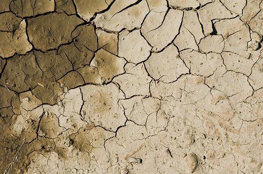 Arid Soil, Desert, Desolate, Infertile, Solitary