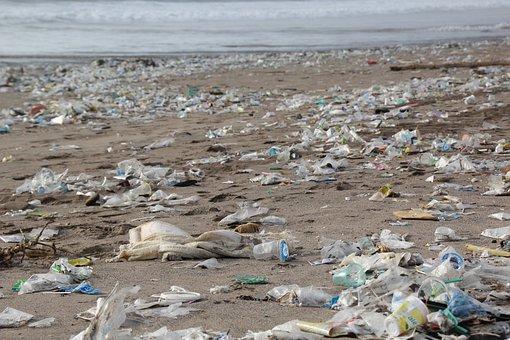 Garbage, Environment, Beach, Pollution, Waste