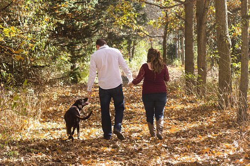 Family, Walking, Woods, Fall, Autumn, Family With Dog