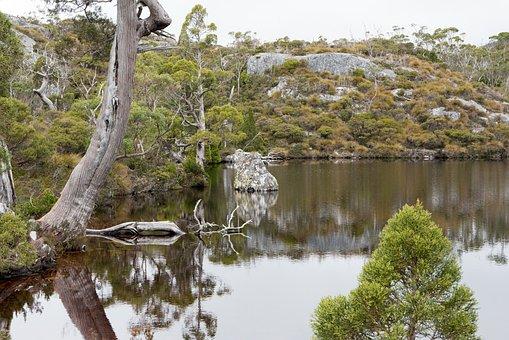 Wombat Pool, Cradle Mountain, Tasmania, Nature