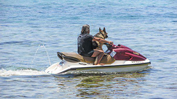 Man, Dog, Best Friends, Jet Ski, Funny, Summertime