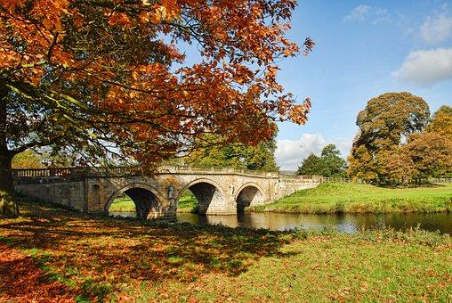 Chatsworth, Autumn, Bridge, Colour, Leaves, Orange