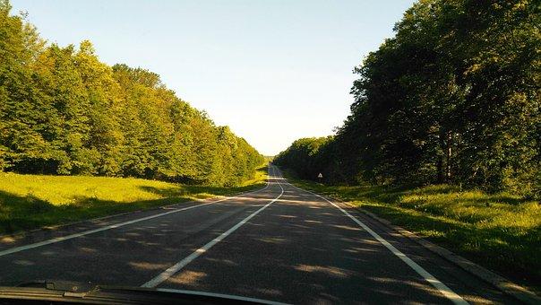 Road, Forest, Blue Sky, Asphalt, Trees, Green