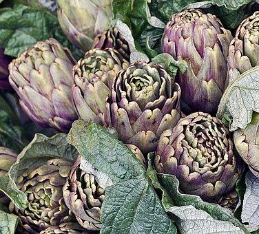 Artichokes, Italy, Vegetables, Food, Organic