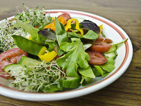 Food, Salad, Meal, Healthy, Lunch, Fresh, Diet