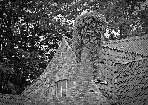 Gable, Old House, Roof, Chimney, Ivy, Building, Leave