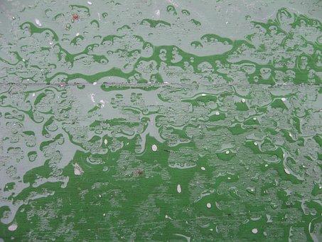 Rain, Wet, Drip, Water, Rainy Weather, Board