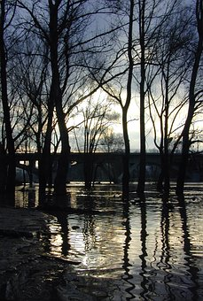 Trees, Reflection, Water, Under Water, Sky, Twilight