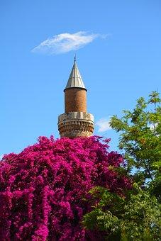 Cami, Blue, Islam, Nature, Green, Tree, Flower, Turkey