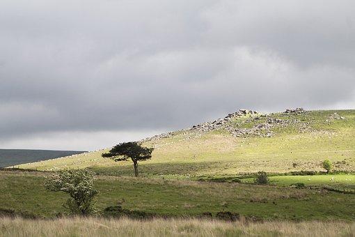 Dartmoor, Tor, Devon, Moor, Rock, Granite, Wild, Hill