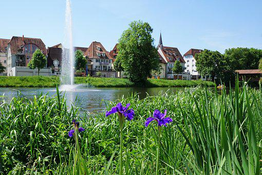 Danube, Tuttlingen, Green, River, Germany, Water