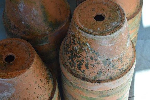 Pots, Cultivation, Flowers, Garden, Grow, Greenhouse