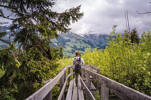 Boardwalk, Gäggersteg, Nature, Wanderer, Switzerland
