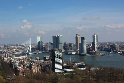 Euromast, Erasmus Bridge, Rotterdam, Swan, Bridge