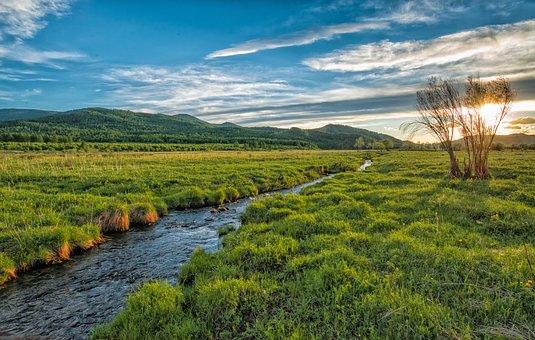 Sunset, Brook, Green Meadow, June, Bogart Village