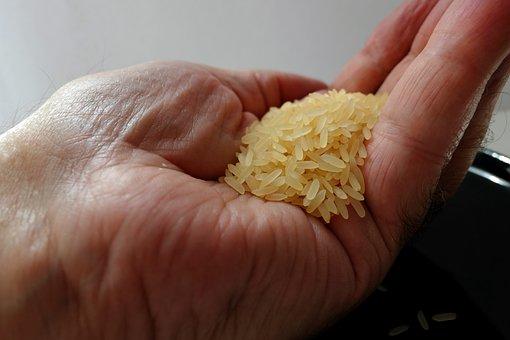 Rice, Handful Of Rice, Rice Bowl, Asia, Food