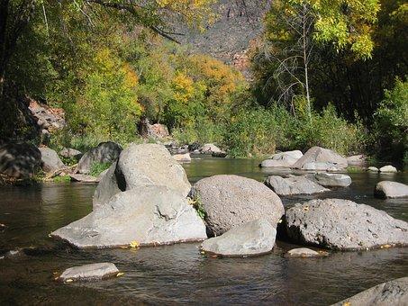 Sedona, Creek, Oak, Nature, Landscape, Scenic