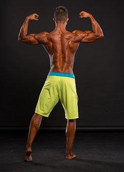 Fitness, Muscles, Back, Strengthening, Man, Biceps