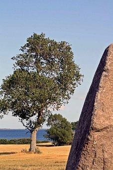 Megalithic Grave, Tolkien, Viking, Denmark, Lolland