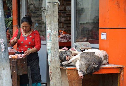 Nepal, Kathmandu, Woman, Pig, Slaughter, Cook, Pork