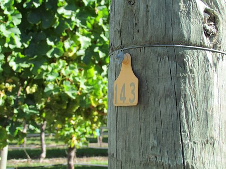 Vineyard, Post, Number