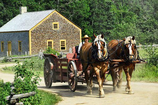 Horse-drawn, Cart, Transportation, Horse, Wagon, Old