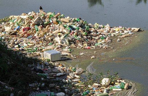 Trash, River Pines, Rubble, Pollution, Pet Bottle