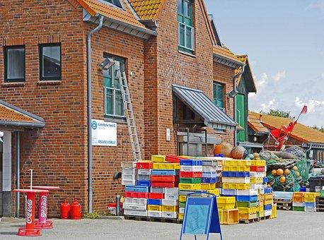 Fisheries Cooperative, Maasholm, Purchase, Sale