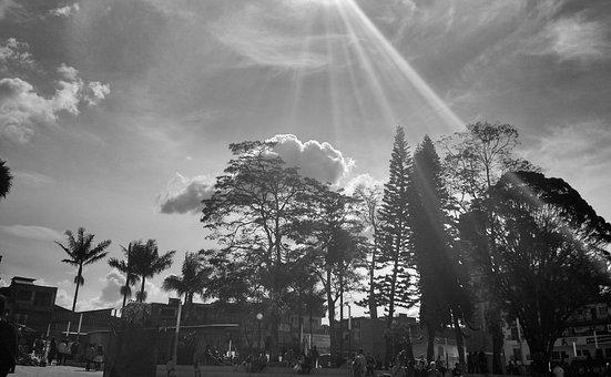 Sunset, White, Black, City, Municipality, Urban, Trees