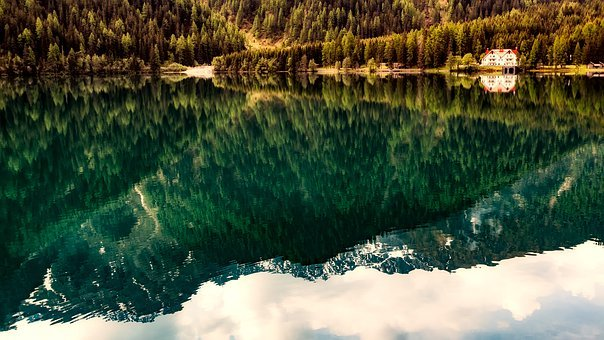Landscape, Lake, Water, Reflections, Forest, Trees